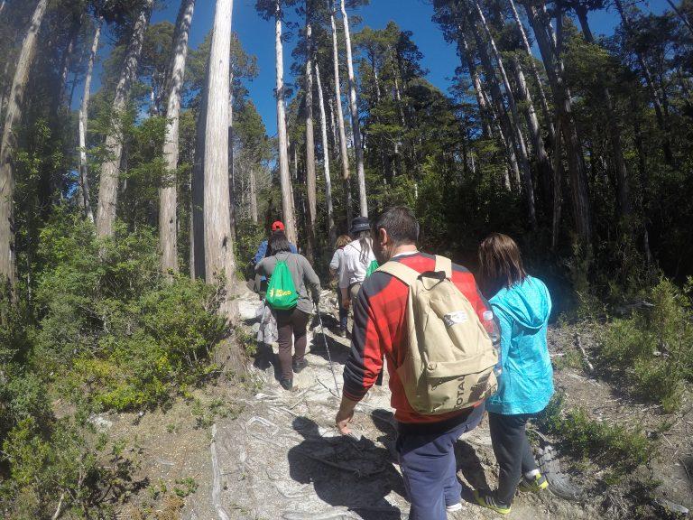 Grupo Turistas en Sendero