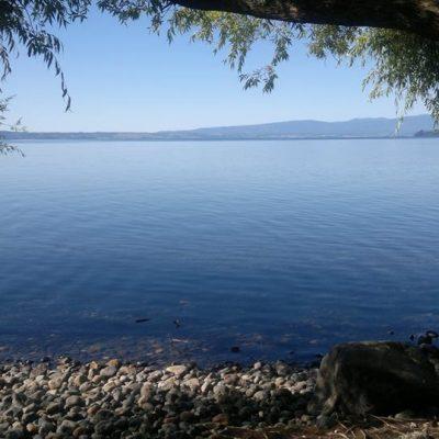 Lago Ranco2